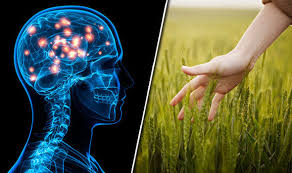 Alzheimer Gene Discovery Pave Way For Better Treatment